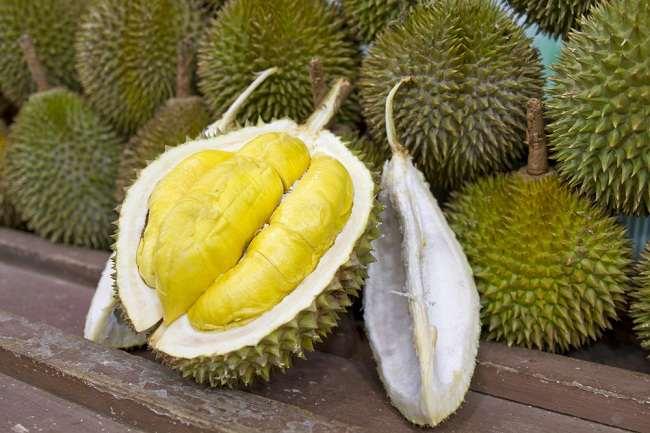 Durian Gandaria Cikakak, Rasanya Super Lezat