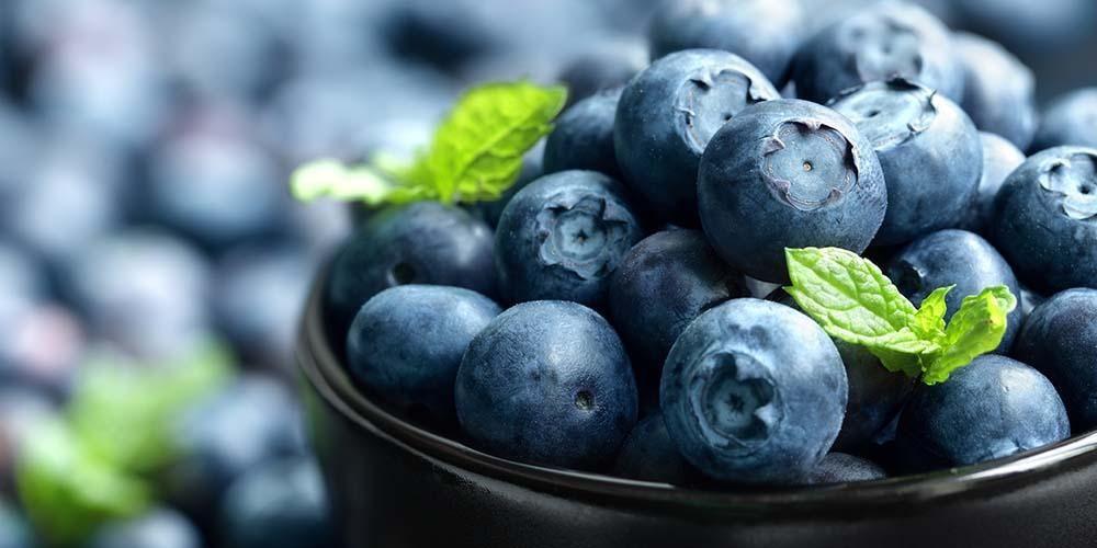 Kandungan Nutrisi pada Blueberry