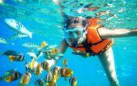 Tips Snorkeling menyenangkan