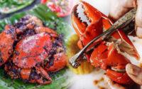 5 Langkah Makan Kepiting Biar Dapat Banyak Daging