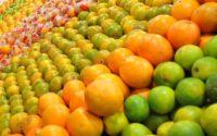 Jenis-jenis Jeruk Paling Populer di Indonesia