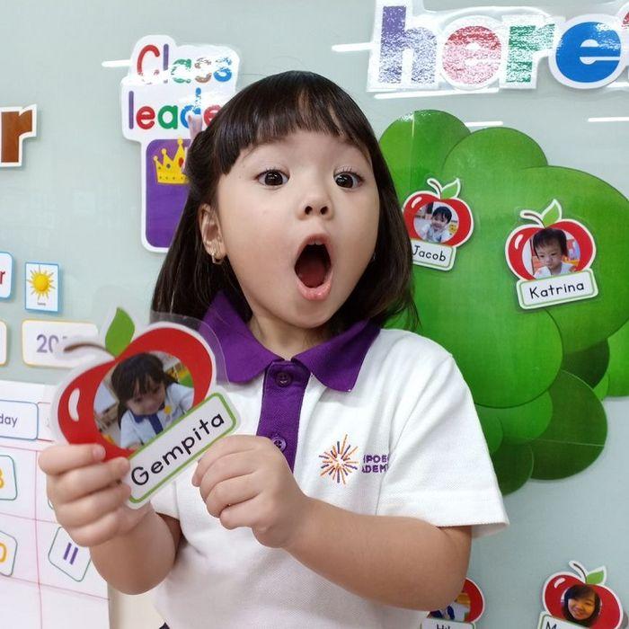 ips Memilih Sekolah Untuk Anak Usia Dini