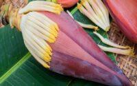 sayur jantung pisang