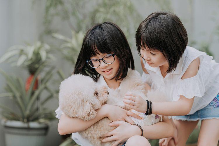 manfaat memelihara hewan untuk anak