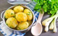 olahan kentang untuk diet