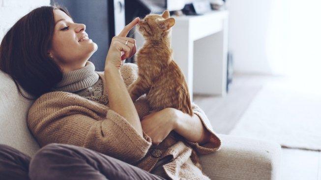cara menggendong kucing
